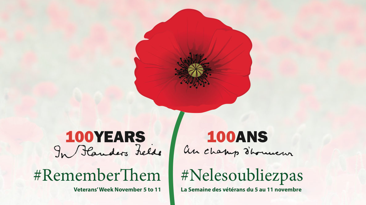 100 Year anniversary of the writing of In Flanders Fields