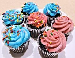 chocolate-mini-cupcakes-749498_960_720